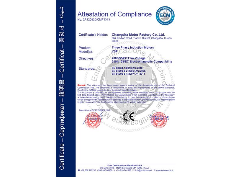 YSP电机CE认证